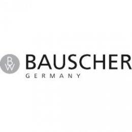DV004-logo_bauscher_270